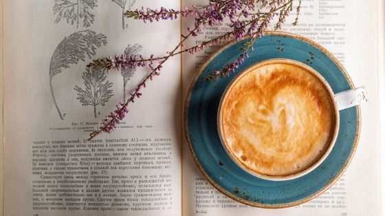 Slow-Coffee-over-the-weekend-book